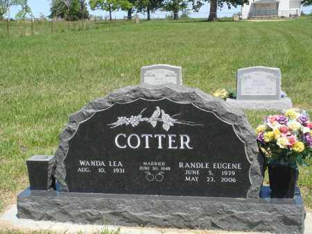 COTTER, RANDLE EUGENE - Baxter County, Arkansas | RANDLE EUGENE COTTER - Arkansas Gravestone Photos