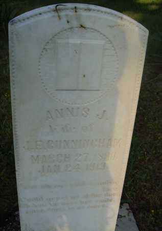 CUNNINGHAM, ANNIS J. - Baxter County, Arkansas | ANNIS J. CUNNINGHAM - Arkansas Gravestone Photos