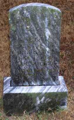 CASTSTEEL CUNNINGHAM, TABITHA - Baxter County, Arkansas | TABITHA CASTSTEEL CUNNINGHAM - Arkansas Gravestone Photos
