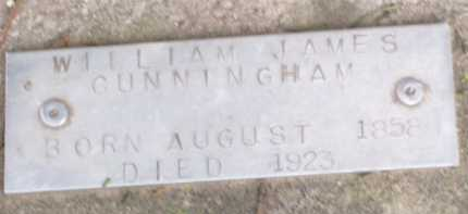 CUNNINGHAM, WILLIAM JAMES - Baxter County, Arkansas | WILLIAM JAMES CUNNINGHAM - Arkansas Gravestone Photos