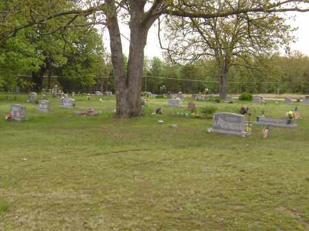 *OVERVIEW,  - Baxter County, Arkansas |  *OVERVIEW - Arkansas Gravestone Photos