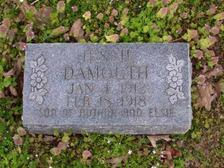 DAMOUTH, JESSIE - Baxter County, Arkansas | JESSIE DAMOUTH - Arkansas Gravestone Photos
