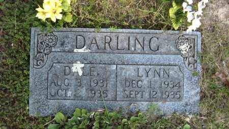 DARLING, LYNN - Baxter County, Arkansas | LYNN DARLING - Arkansas Gravestone Photos