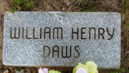 DAWS, WILLIAM HENRY - Baxter County, Arkansas | WILLIAM HENRY DAWS - Arkansas Gravestone Photos