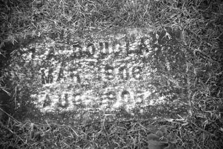 DOUGLAS (TWIN), IDONA - Baxter County, Arkansas | IDONA DOUGLAS (TWIN) - Arkansas Gravestone Photos