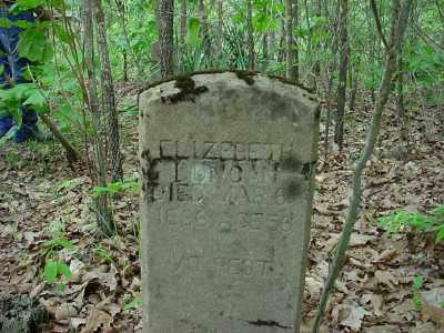 DUNCAN, ELIZABETH - Baxter County, Arkansas | ELIZABETH DUNCAN - Arkansas Gravestone Photos