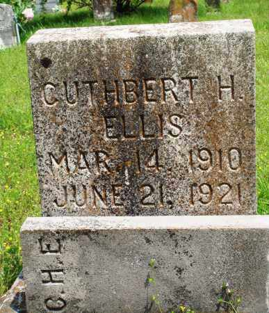 ELLIS, CUTHBERT H - Baxter County, Arkansas | CUTHBERT H ELLIS - Arkansas Gravestone Photos
