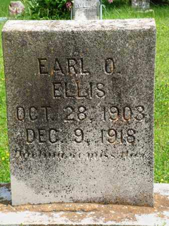 ELLIS, EARL O - Baxter County, Arkansas | EARL O ELLIS - Arkansas Gravestone Photos