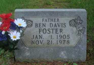 FOSTER, BEN DAVIS - Baxter County, Arkansas | BEN DAVIS FOSTER - Arkansas Gravestone Photos