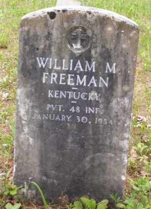 FREEMAN (VETERAN), WILLIAM M - Baxter County, Arkansas | WILLIAM M FREEMAN (VETERAN) - Arkansas Gravestone Photos