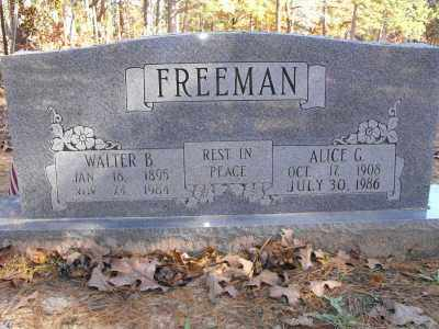 FREEMAN, ALICE G. - Baxter County, Arkansas | ALICE G. FREEMAN - Arkansas Gravestone Photos