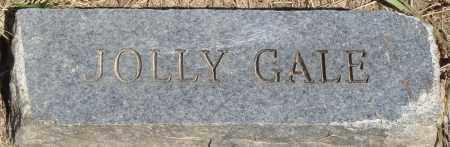 GALE, JOLLY - Baxter County, Arkansas | JOLLY GALE - Arkansas Gravestone Photos