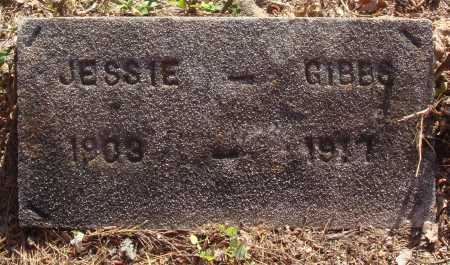 GIBBS, JESSIE - Baxter County, Arkansas | JESSIE GIBBS - Arkansas Gravestone Photos