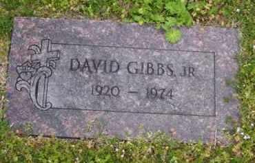 GIBBS, JR, DAVID - Baxter County, Arkansas | DAVID GIBBS, JR - Arkansas Gravestone Photos