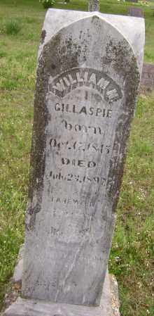 GILLASPIE, WILLIAM N. - Baxter County, Arkansas | WILLIAM N. GILLASPIE - Arkansas Gravestone Photos