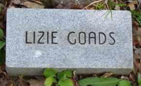 "COCKRUM GOAD, ELIZABETH ""LIZIE"" - Baxter County, Arkansas | ELIZABETH ""LIZIE"" COCKRUM GOAD - Arkansas Gravestone Photos"