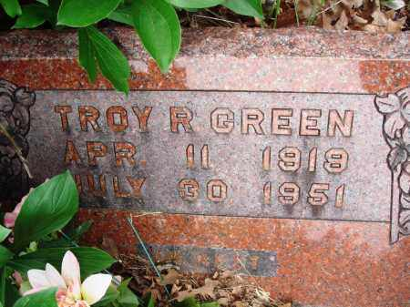 GREEN, TROY R - Baxter County, Arkansas | TROY R GREEN - Arkansas Gravestone Photos