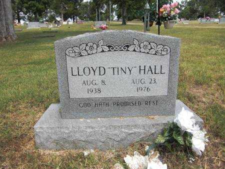 "HALL, LLOYD ""TINY"" - Baxter County, Arkansas 
