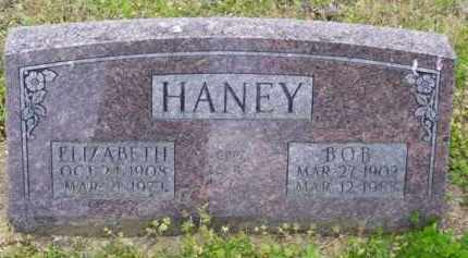 HANEY, BOB - Baxter County, Arkansas | BOB HANEY - Arkansas Gravestone Photos