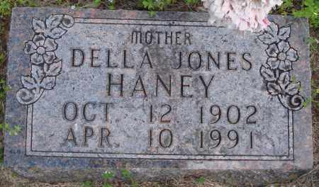 JONES HANEY, DELLA - Baxter County, Arkansas | DELLA JONES HANEY - Arkansas Gravestone Photos