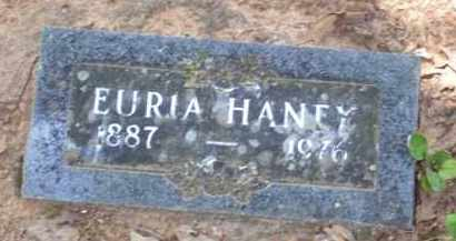 HANEY, EURIA K. - Baxter County, Arkansas | EURIA K. HANEY - Arkansas Gravestone Photos