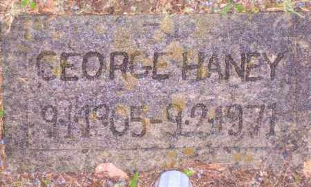 HANEY, GEORGE VON - Baxter County, Arkansas | GEORGE VON HANEY - Arkansas Gravestone Photos