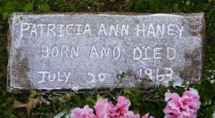 HANEY, PATRICIA ANN - Baxter County, Arkansas | PATRICIA ANN HANEY - Arkansas Gravestone Photos
