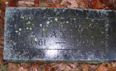 HANEY, SAM A. - Baxter County, Arkansas | SAM A. HANEY - Arkansas Gravestone Photos