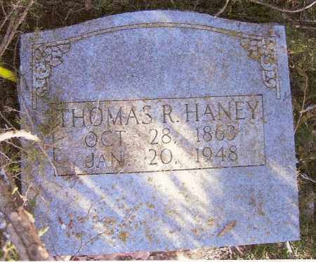 HANEY, THOMAS RICHARD - Baxter County, Arkansas | THOMAS RICHARD HANEY - Arkansas Gravestone Photos