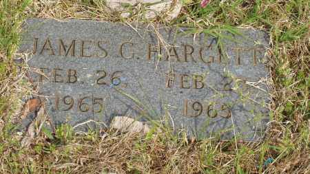HARGETT, JAMES G - Baxter County, Arkansas | JAMES G HARGETT - Arkansas Gravestone Photos