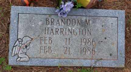 HARRINGTON, BRANDON MICHAEL (OBIT) - Baxter County, Arkansas | BRANDON MICHAEL (OBIT) HARRINGTON - Arkansas Gravestone Photos