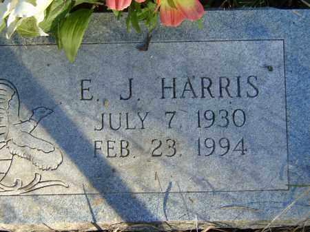 HARRIS, E. J. - Baxter County, Arkansas | E. J. HARRIS - Arkansas Gravestone Photos