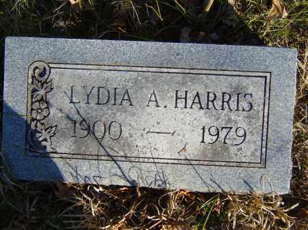 HARRIS, LYDIA A. - Baxter County, Arkansas | LYDIA A. HARRIS - Arkansas Gravestone Photos