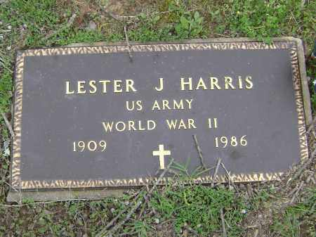 HARRIS (VETERAN WWII), LESTER J. - Baxter County, Arkansas | LESTER J. HARRIS (VETERAN WWII) - Arkansas Gravestone Photos