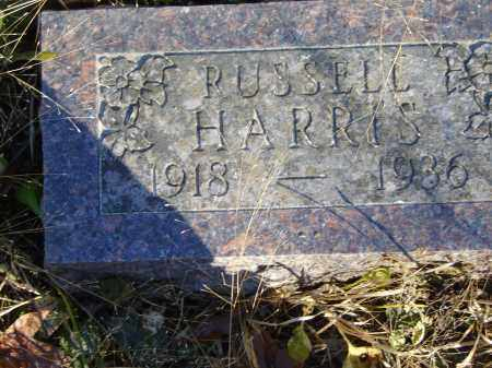 HARRIS, RUSSELL - Baxter County, Arkansas | RUSSELL HARRIS - Arkansas Gravestone Photos