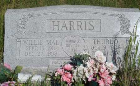 HARRIS, WILLIE MAE - Baxter County, Arkansas | WILLIE MAE HARRIS - Arkansas Gravestone Photos