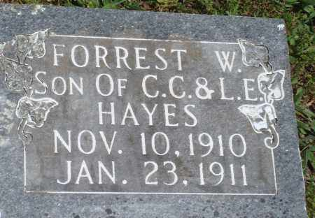 HAYES, FORREST W - Baxter County, Arkansas | FORREST W HAYES - Arkansas Gravestone Photos