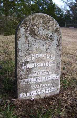 HEISKILL, GEORGE W. - Baxter County, Arkansas | GEORGE W. HEISKILL - Arkansas Gravestone Photos