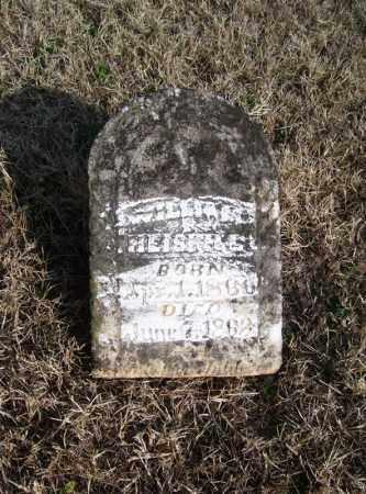HEISKILL, WILLIAM - Baxter County, Arkansas | WILLIAM HEISKILL - Arkansas Gravestone Photos