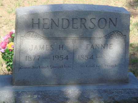 HENDERSON, FANNIE - Baxter County, Arkansas | FANNIE HENDERSON - Arkansas Gravestone Photos