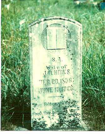 MOSES HICKS, S. A. - Baxter County, Arkansas | S. A. MOSES HICKS - Arkansas Gravestone Photos