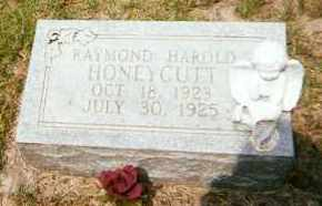 HONEYCUTT, RAYMOND HAROLD - Baxter County, Arkansas | RAYMOND HAROLD HONEYCUTT - Arkansas Gravestone Photos