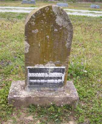 JACKSON (2), CHARLES E. - Baxter County, Arkansas | CHARLES E. JACKSON (2) - Arkansas Gravestone Photos