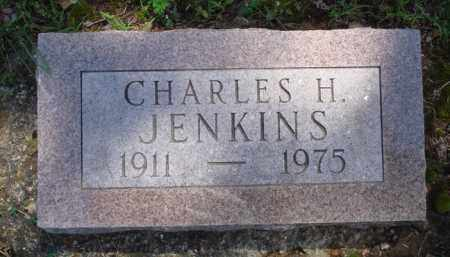 JENKINS, CHARLES H. - Baxter County, Arkansas | CHARLES H. JENKINS - Arkansas Gravestone Photos