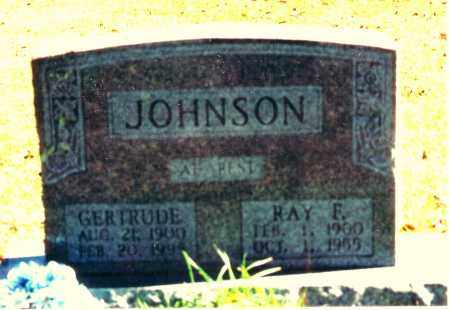 JOHNSON, RAY F. - Baxter County, Arkansas | RAY F. JOHNSON - Arkansas Gravestone Photos