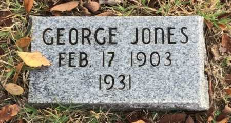 JONES, GEORGE - Baxter County, Arkansas | GEORGE JONES - Arkansas Gravestone Photos