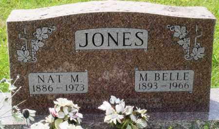 JONES, NAT M - Baxter County, Arkansas | NAT M JONES - Arkansas Gravestone Photos