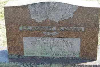 JONES (VETERAN WWII), ROBERT W - Baxter County, Arkansas | ROBERT W JONES (VETERAN WWII) - Arkansas Gravestone Photos
