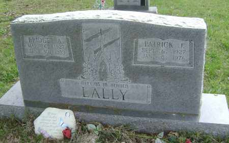 LALLY, PATRICK J. - Baxter County, Arkansas | PATRICK J. LALLY - Arkansas Gravestone Photos