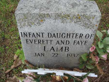 LAMB, INFANT DAUGHTER - Baxter County, Arkansas | INFANT DAUGHTER LAMB - Arkansas Gravestone Photos